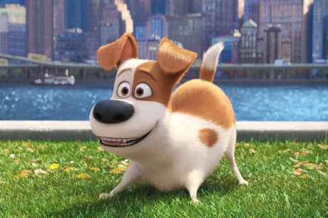 Image of cartoon dog from film 'The Secret Life of Pets'