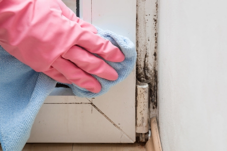 Person wiping mold from a door frame
