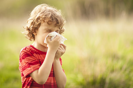 Little boy sneezing into a tissue due to cold or allergy symptoms, outside on a sunny day.